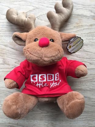 Picture of CSBS Reindeer
